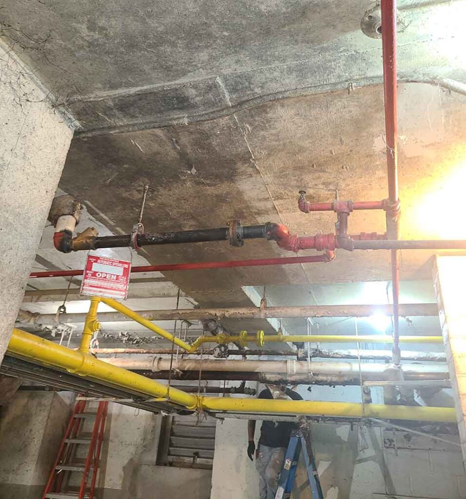 ITS Environmental Services Mold Remediation Job 8-2021 Before 2